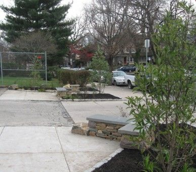 Landscape improvements along 63rd Street in Overbrook Farms designed by Sara Pevaroff Schuh.